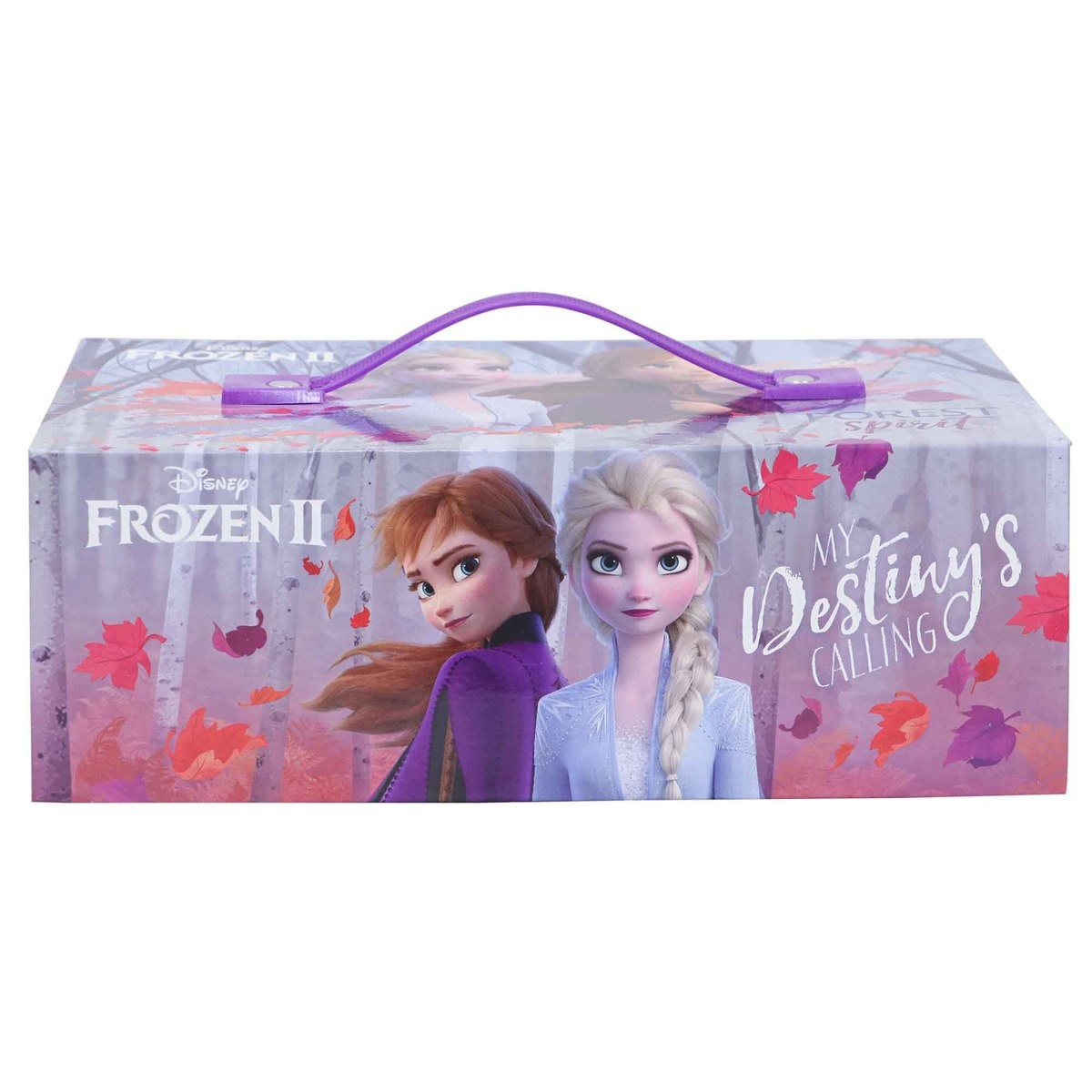 Frozen Coloring Case